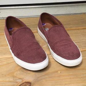 Steve Madden maroon/purple slip on tennis shoes